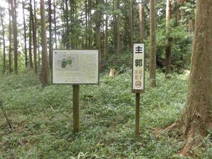 和田支城1